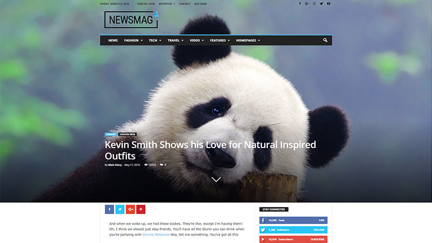 Newsmag's free integration has a newsletter subscription plugin.