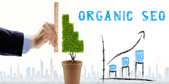 Organic SEO is very important for your site